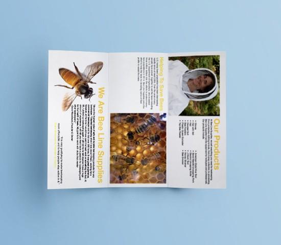 bee_line_brochure_mockup_front